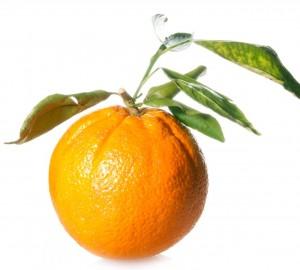Vitamin C Serum - Picture of an Orange