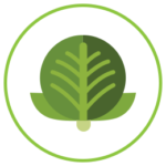 Emblem for Skin Support - Increasing Cruciferous Vegetable Consumption for Skin Health Module
