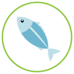 Emblem for Skin Support - Eating Fresh Fish for Skin Health Module