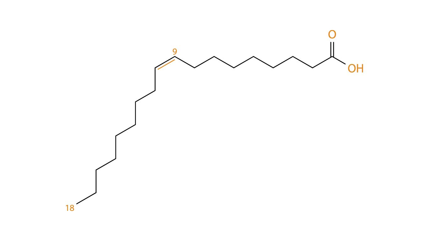Oleic acid molecule - in it's free fatty acid form