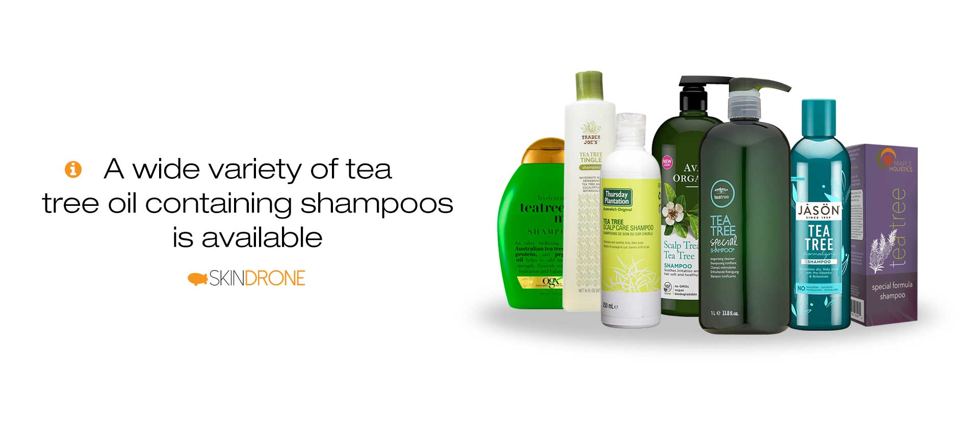 Several different bottles of popular tea tree containing anti-dandruff shampoos