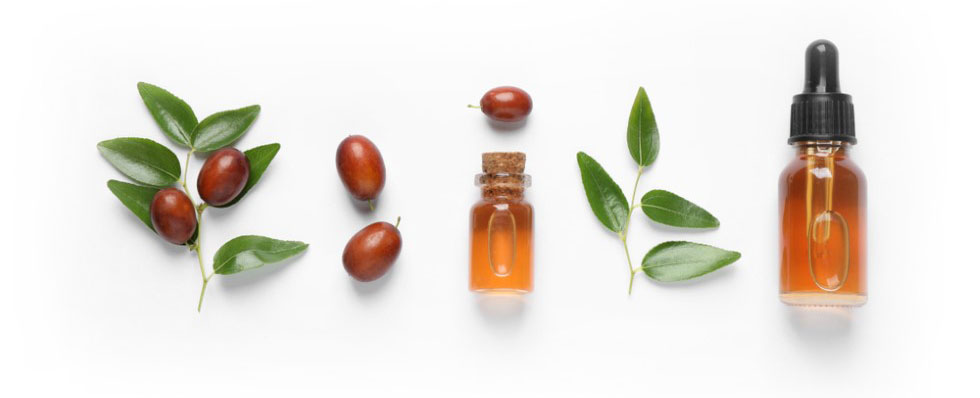 Bottle of jojoba oil with a dropper top beside a few jojoba branches and beans
