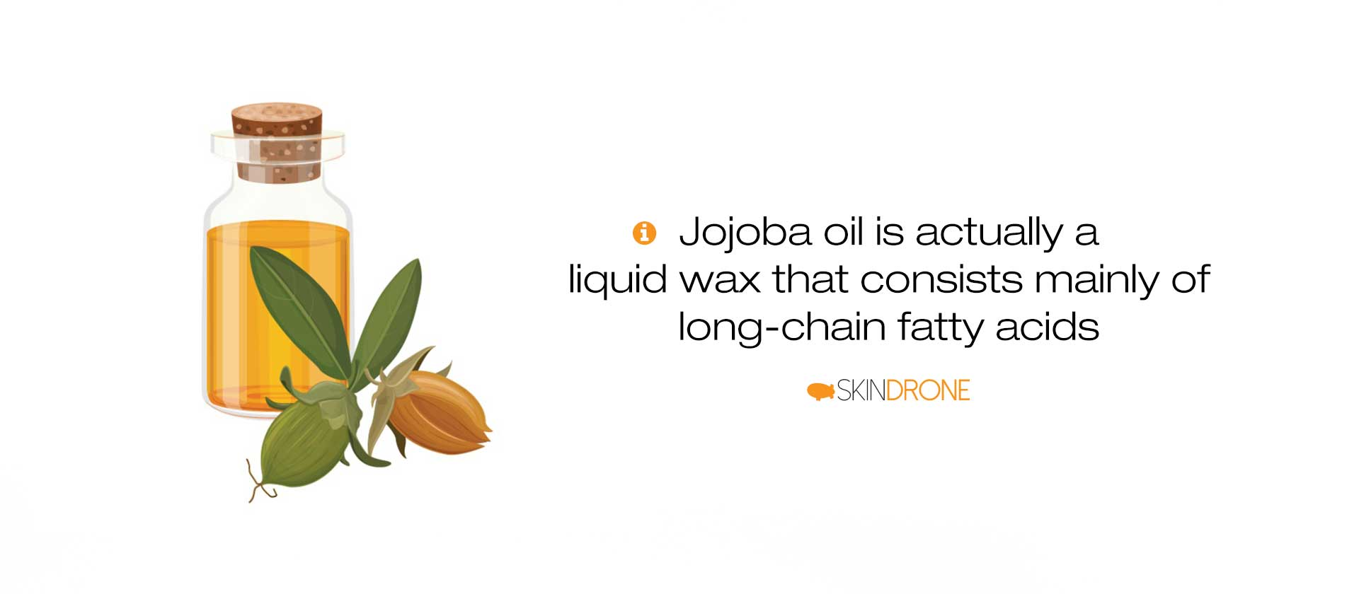 Bottle of jojoba oil beside block of text noting its unique properties - the high amount of long-chain fatty acids and esters