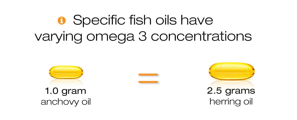Banner stating that omega 3 concentrations differ among fish oils - image shows a small 1 gram capsule of anchovy oil in comparison to a 2.5 gram capsule of herring oil